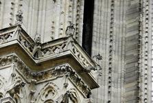 Katedrála Notre Dame (chiméry)